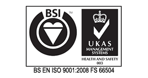 BSEN ISO 9001 Sample Logo