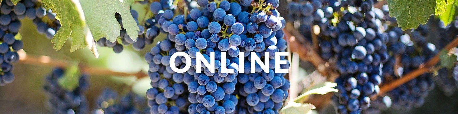 WSET Level 2 Award in Wine & Spirits – Online