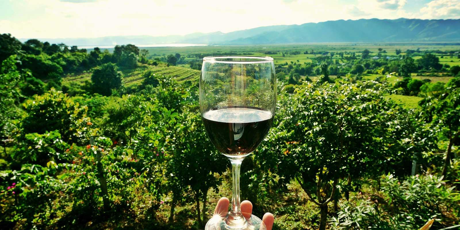 Wine Academy Italia Venues